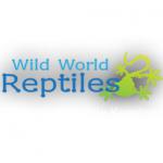 Wild World Reptiles – Innovative Reptile Store